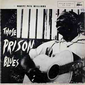 Robert Pete Williams - Those Prison Blues download flac