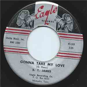 B.T. James - Gonna Take My Love / Look At The Girl download flac