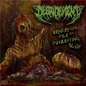 Debridement - Reduced To A Pile Of Putrefying Slop download flac